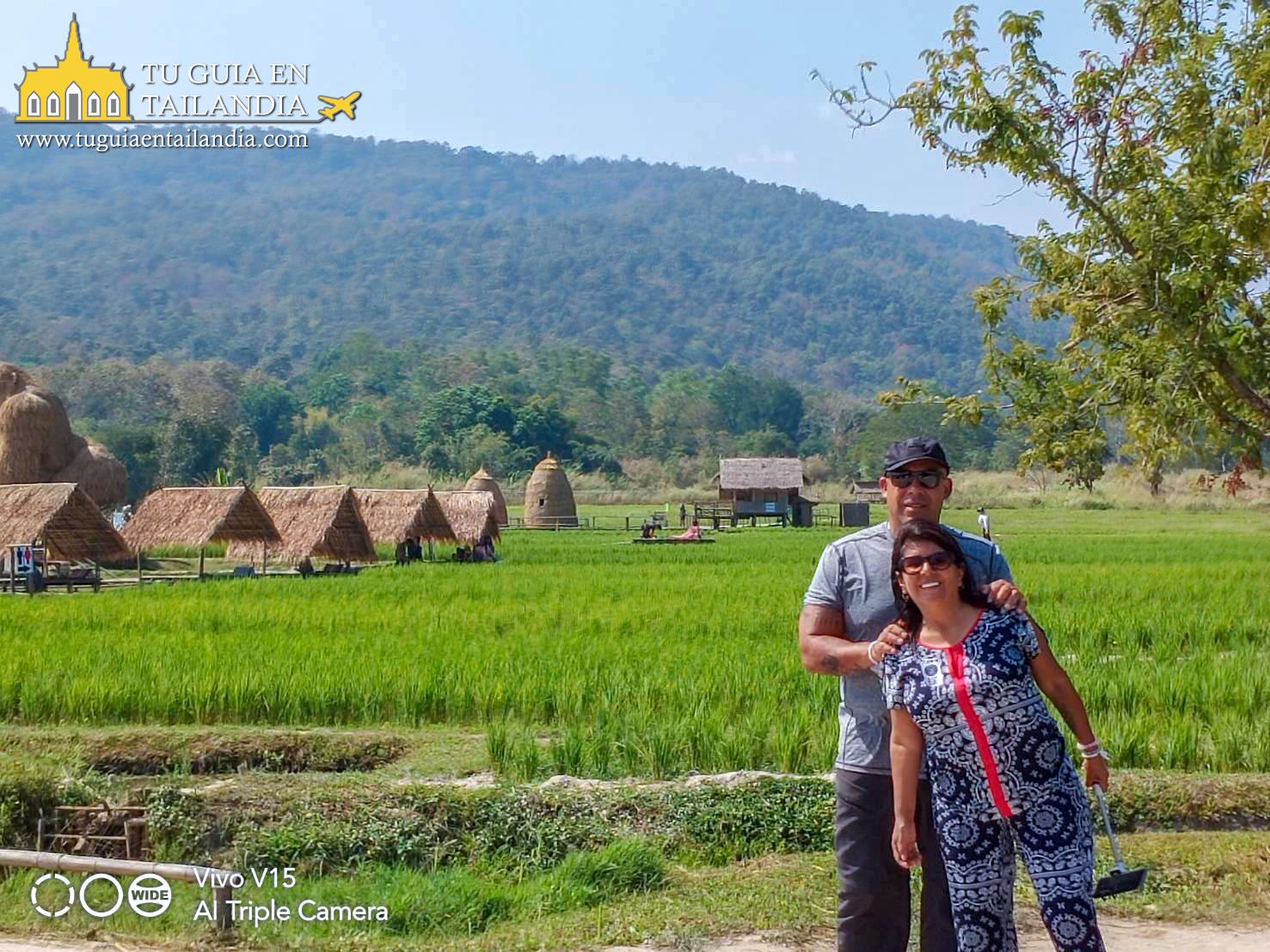 campos de arroz en chiang mai